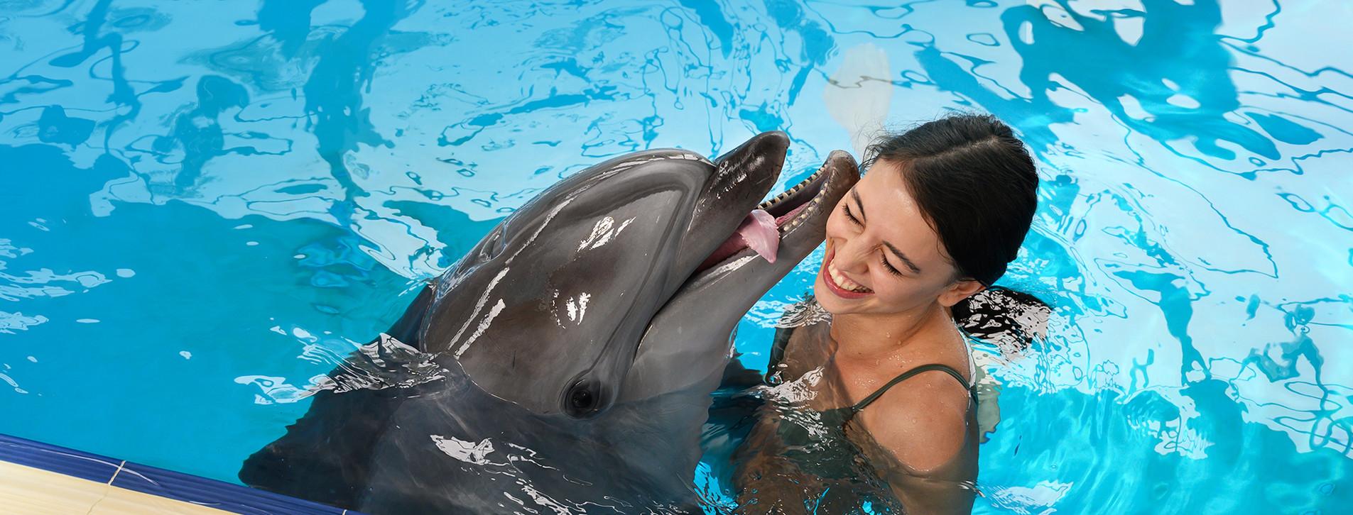 Фото - Плавание с дельфинами
