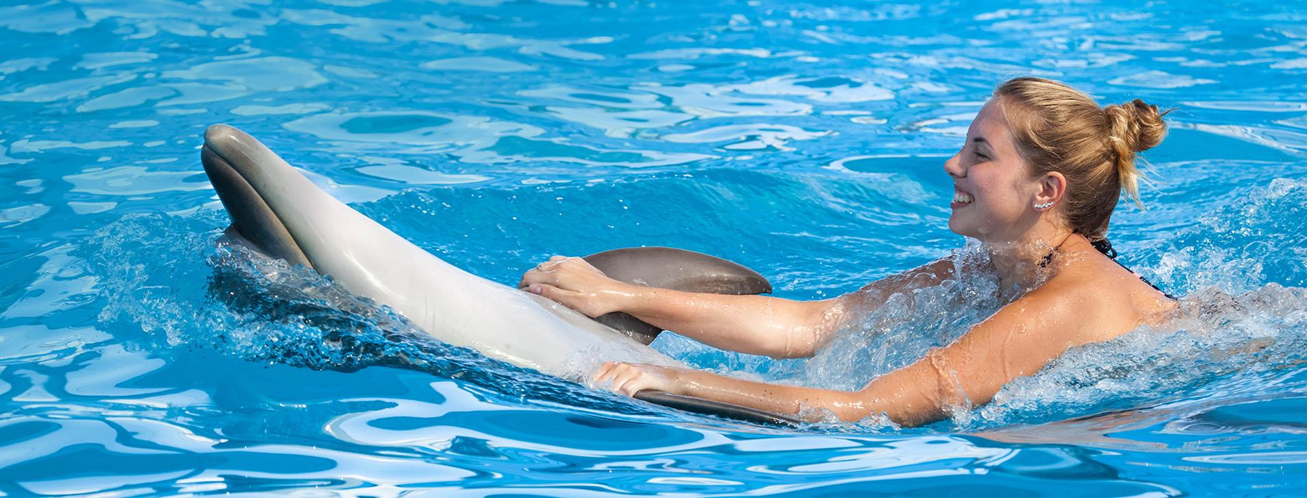 Фото - Плавание с дельфинами для двоих